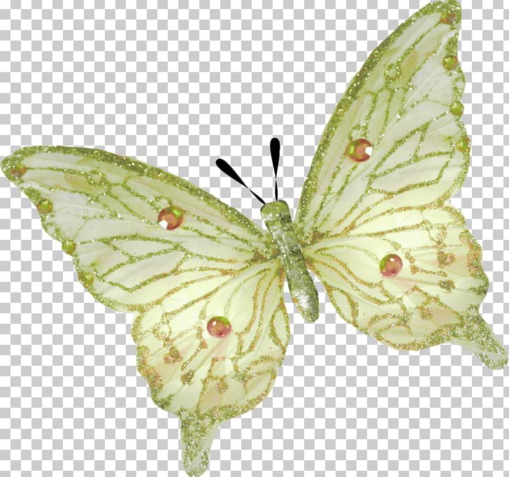 Butterfly Insect Lavender PNG, Clipart, Arthropod, Bluegreen.