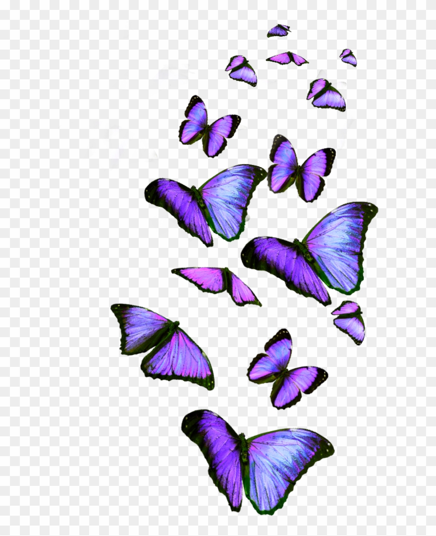 Lavender Butterfly Clip Art.