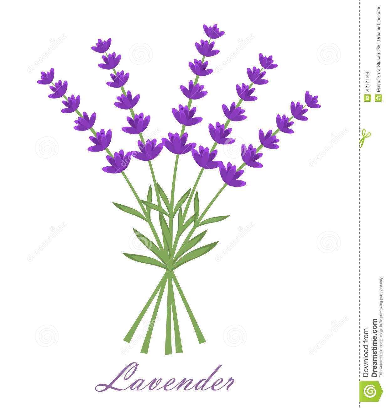 Lavender Clipart Clipground