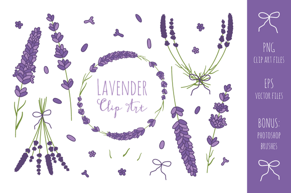 Lavender Branches Clip Art + Vector ~ Illustrations on.