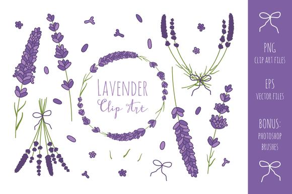 Lavender Branches Clip Art + Vector ~ Illustrations on.