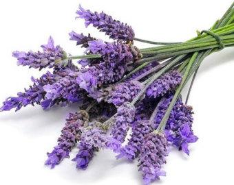 Organic lavender.
