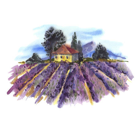 1,784 Natural Lavender Stock Illustrations, Cliparts And Royalty.