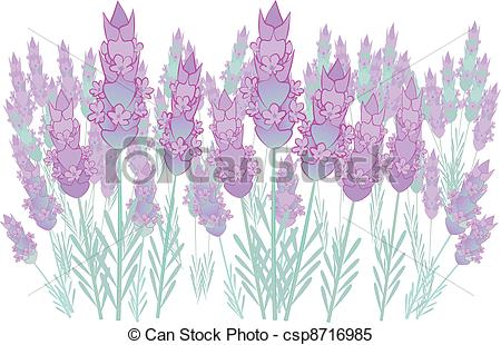 Clipart Vector of Lavender background.