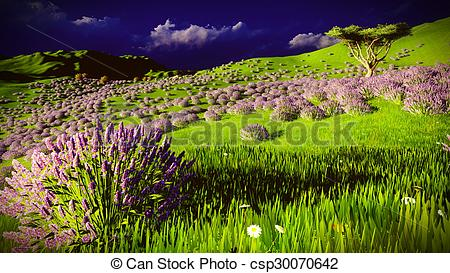 Drawing of Lavender fields with a solitary tree csp30070642.
