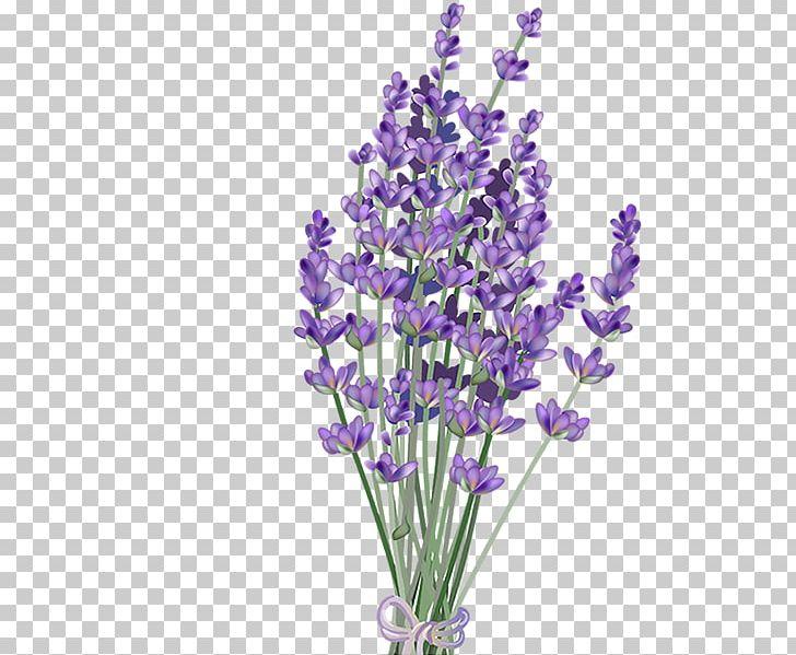 Lavender Flower PNG, Clipart, Art, Art Blog, Clip Art, Color.