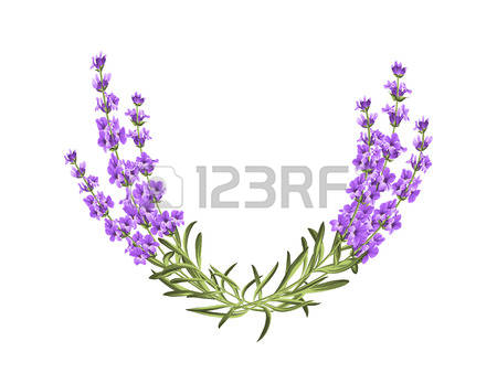 0 Purple Leaves Background Stock Vector Illustration And Royalty.