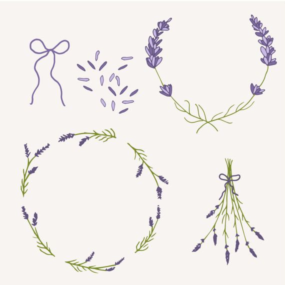 1000+ images about ♥ Lavender & Olive ♥ on Pinterest.