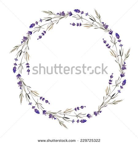 1000+ images about Lavender fields, Provence on Pinterest.