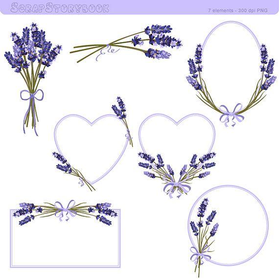 1000+ ideas about Lavender Flowers on Pinterest.