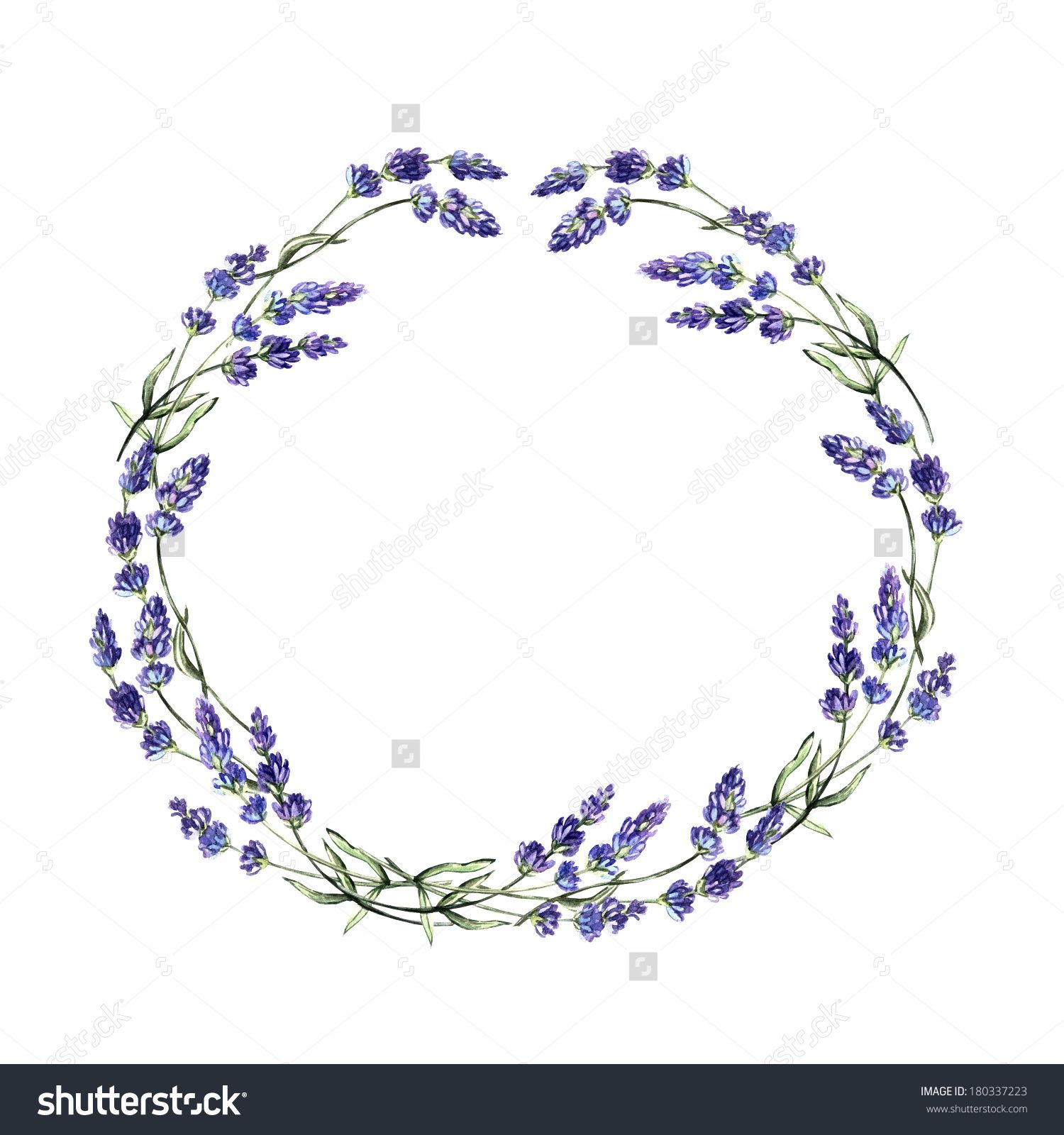 lavender wreaths drawing.