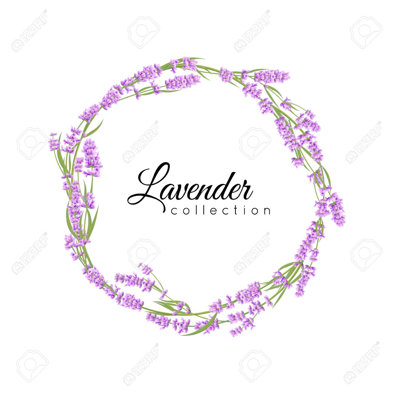 Lavender wreath isolated for wedding salon, greeting cards..