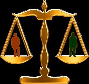 Law Vector.