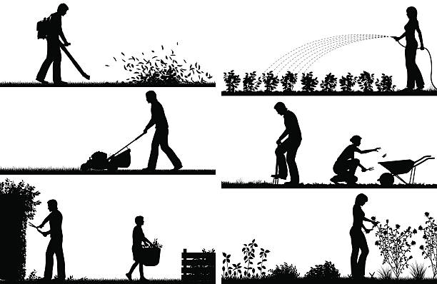 Best Lawn Care Illustrations, Royalty.