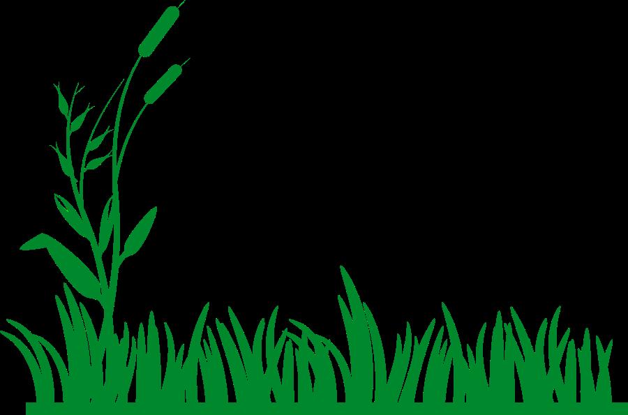 Lawn Clipart.