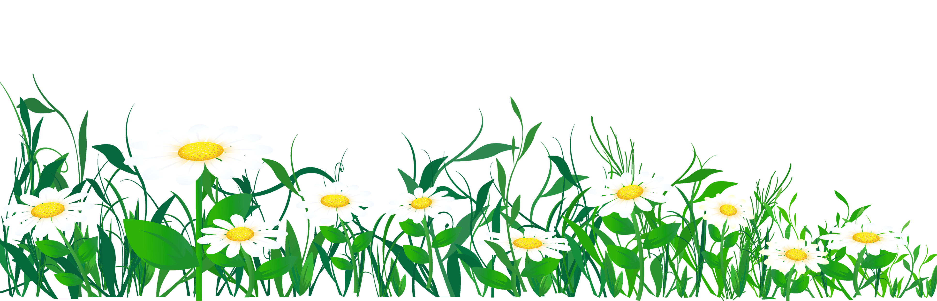Daisies and Grass Clip Art.