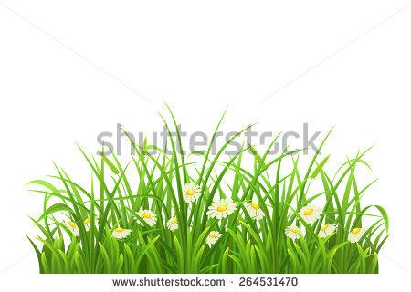 Green Lawn Stock Vectors & Vector Clip Art.