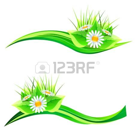 2,384 Lawn Daisy Stock Vector Illustration And Royalty Free Lawn.