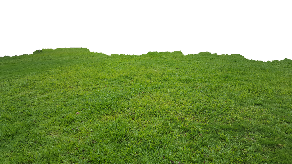 SP/17, Grass, lawn, png v.2.7 photos.