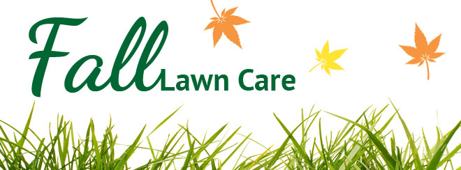 Lawn Maintenance Pictures.