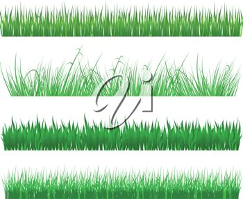 Royalty Free Clipart Image: Four Different Types of Grasses Or Lawns.