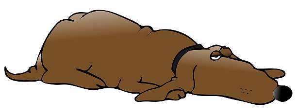 Cartoon Of The Lazy Dog Clip Art, Vector Images & Illustrations.