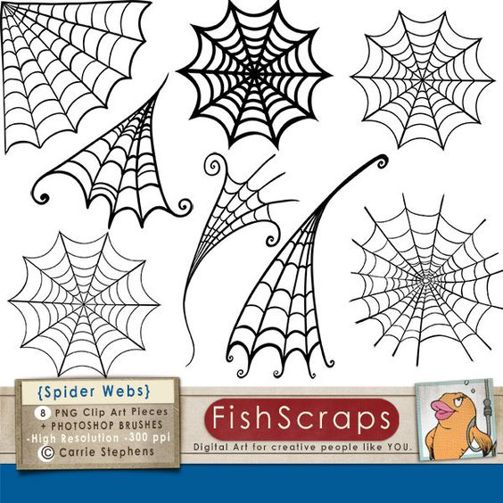Spider webs, Clip art and Spider on Pinterest.