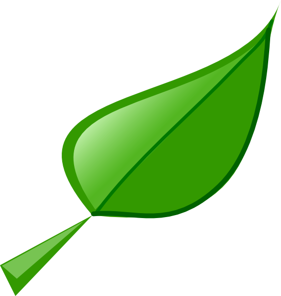 The picture for the word «Leaf, Blade».