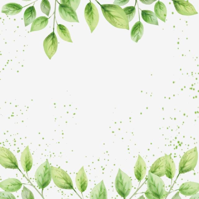 Marijuana Leaf Border, In Kind, Green Leaves PNG Transparent.