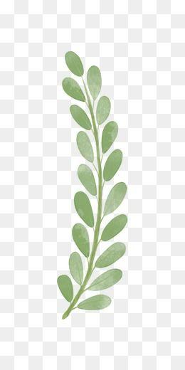 2019 的 Branches, Hand Painted, Leaves PNG Transparent Image.