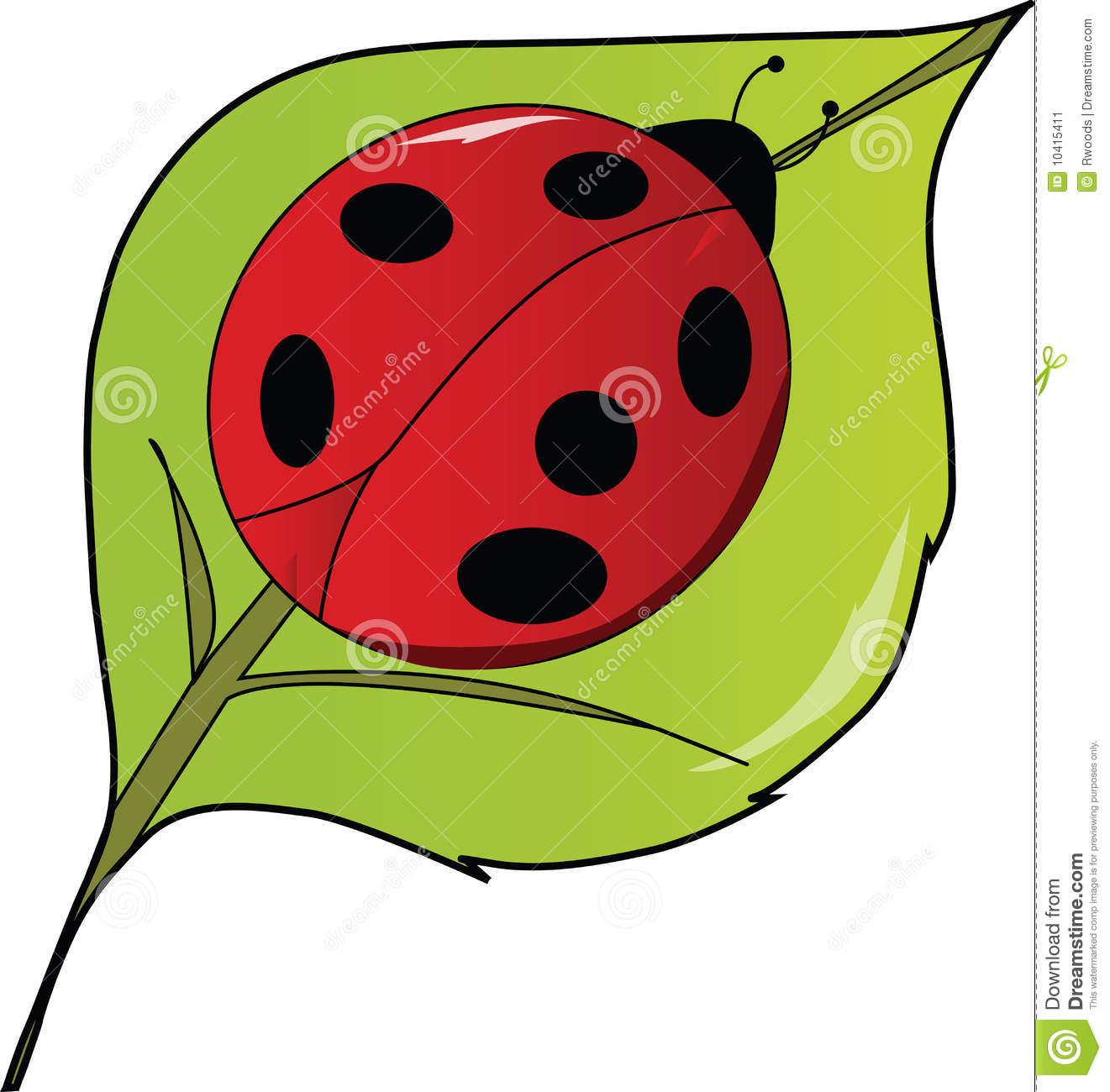 LadyBug Lady Bug On A Leaf Stock Image.