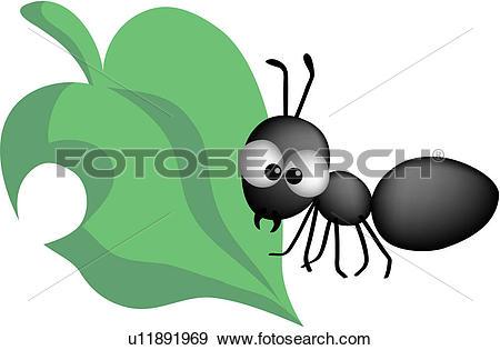 Clip Art of animal, bug, leaves, leaf, insect, ants u11891969.