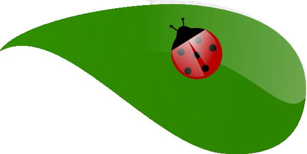 Lady Bug On Leaf Clip Art at Clker.com.