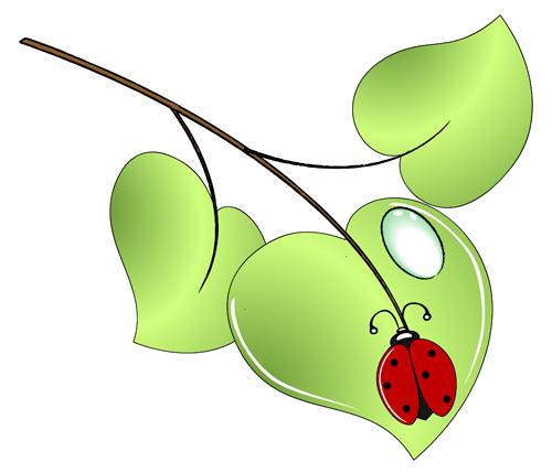 Showing post & media for Leaf bug cartoon.