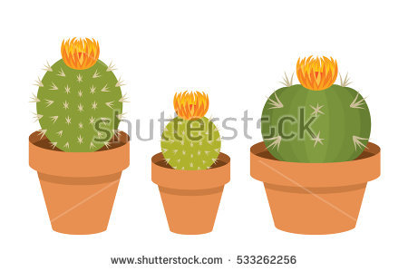 Three Pink Blooming Potted Cactus Plant Clip Art Set #505466770.