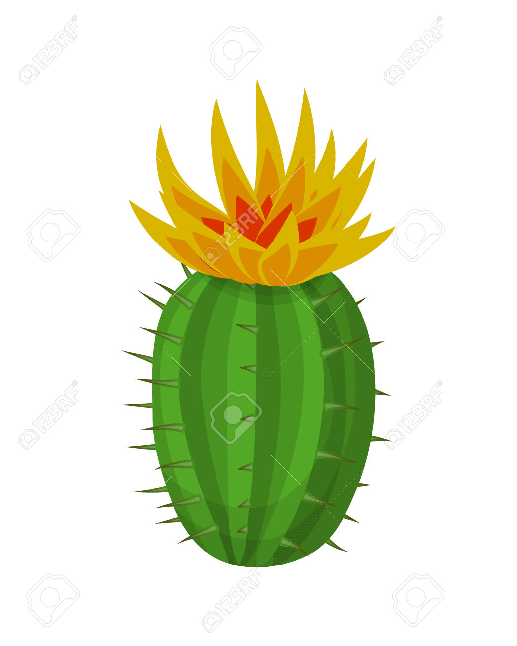 Cactus Plant With Flowers. Blooming Cactus. Vector Illustration.