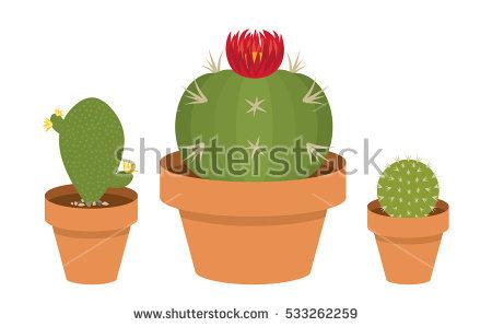 Succulent Clip Art Stock Photos, Royalty.