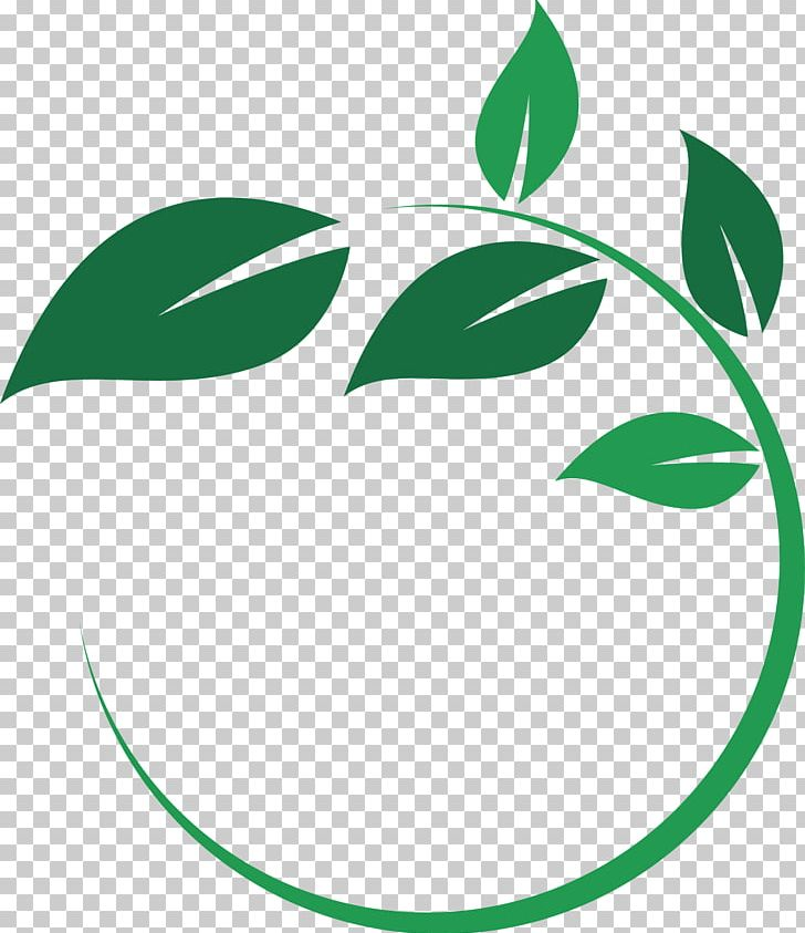 Main Street Wellness Studio Leaf Circle Plant Stem Logo PNG.