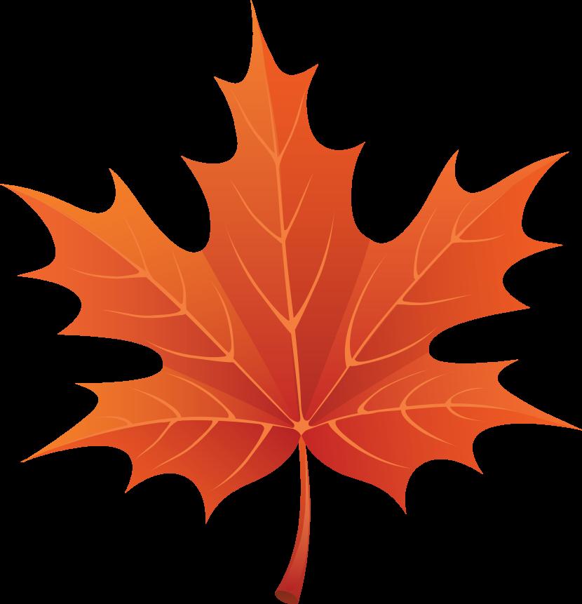 Leaf clip art images free clipart images.