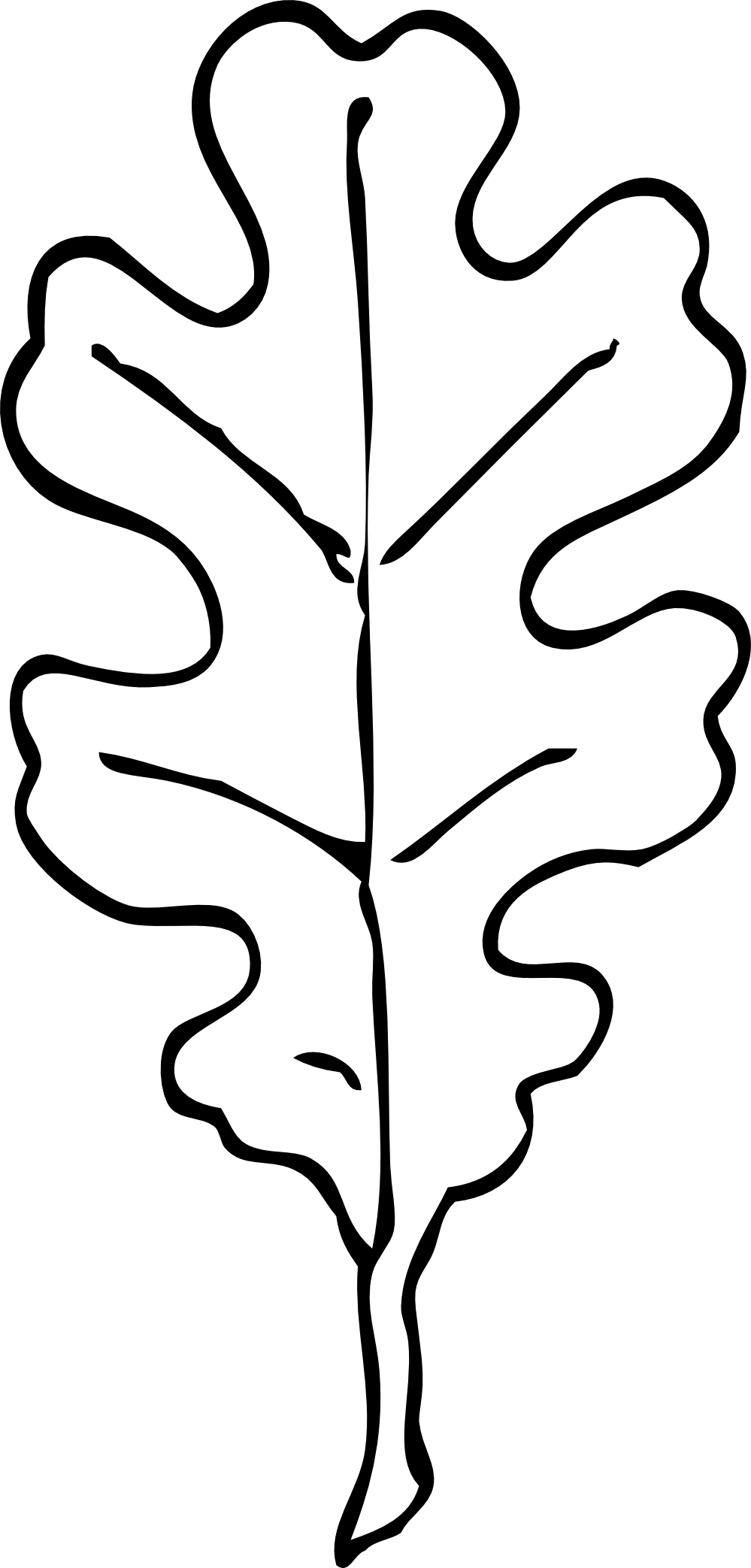 White oak leaf outline patterns leaves and clipart.