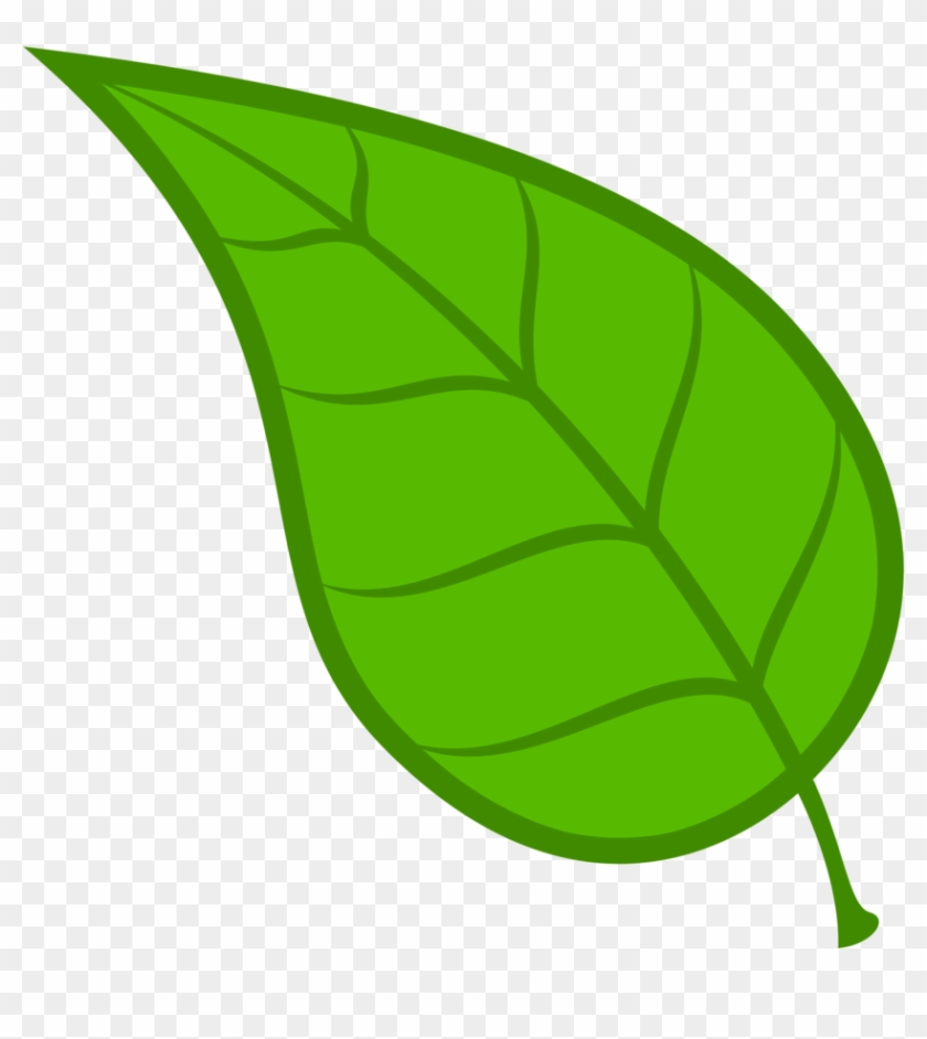 Collection Of Free Leaf Vector Cdr.