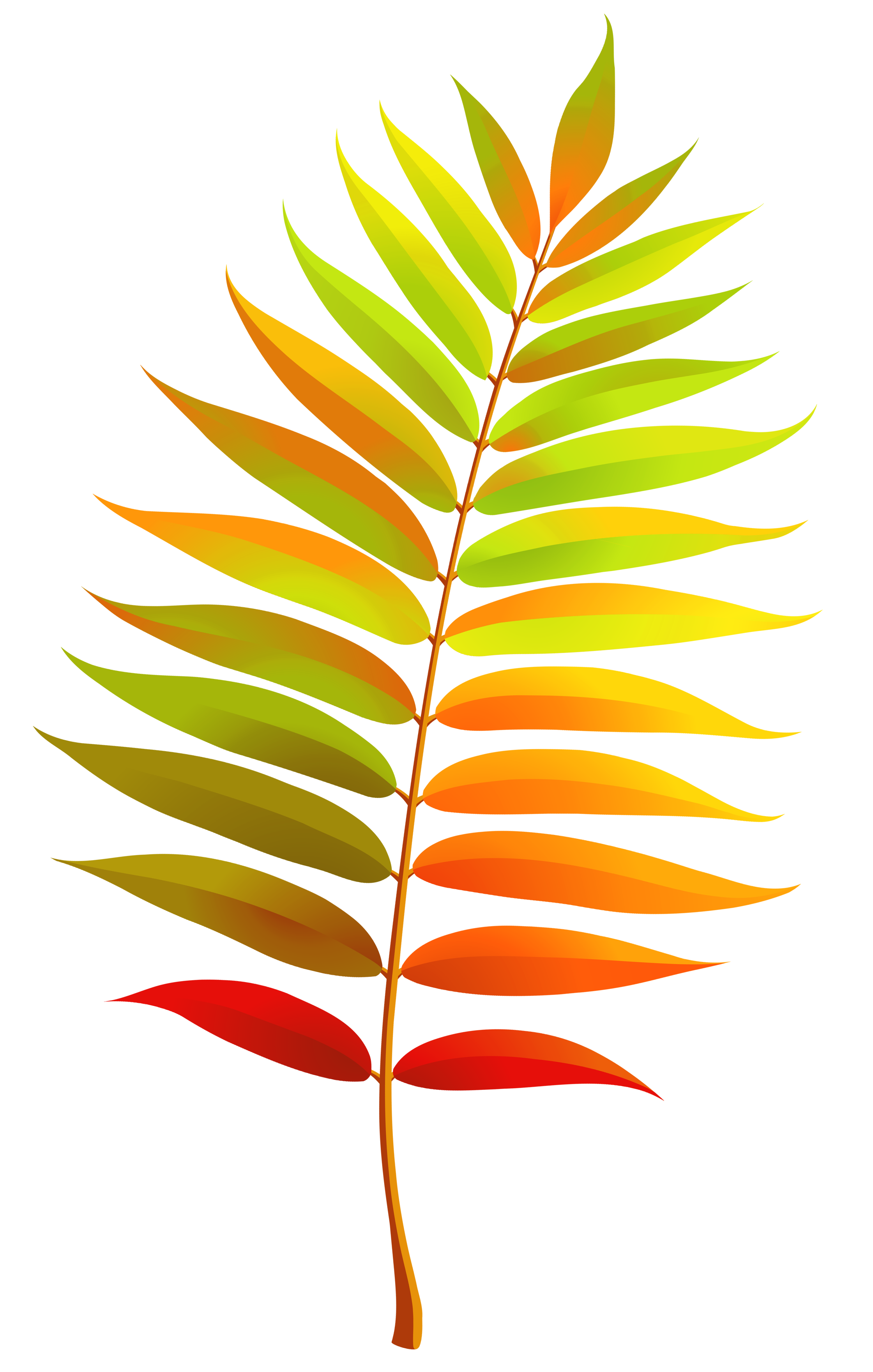 Colorful_Transparent_Fall_Leaf_Clipart.png?m=1409675820.