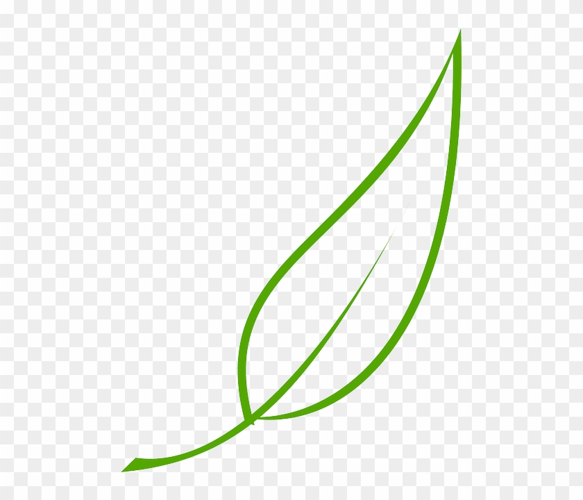 Green, Outline, Drawing, Leaf, Cartoon, Free, Color.