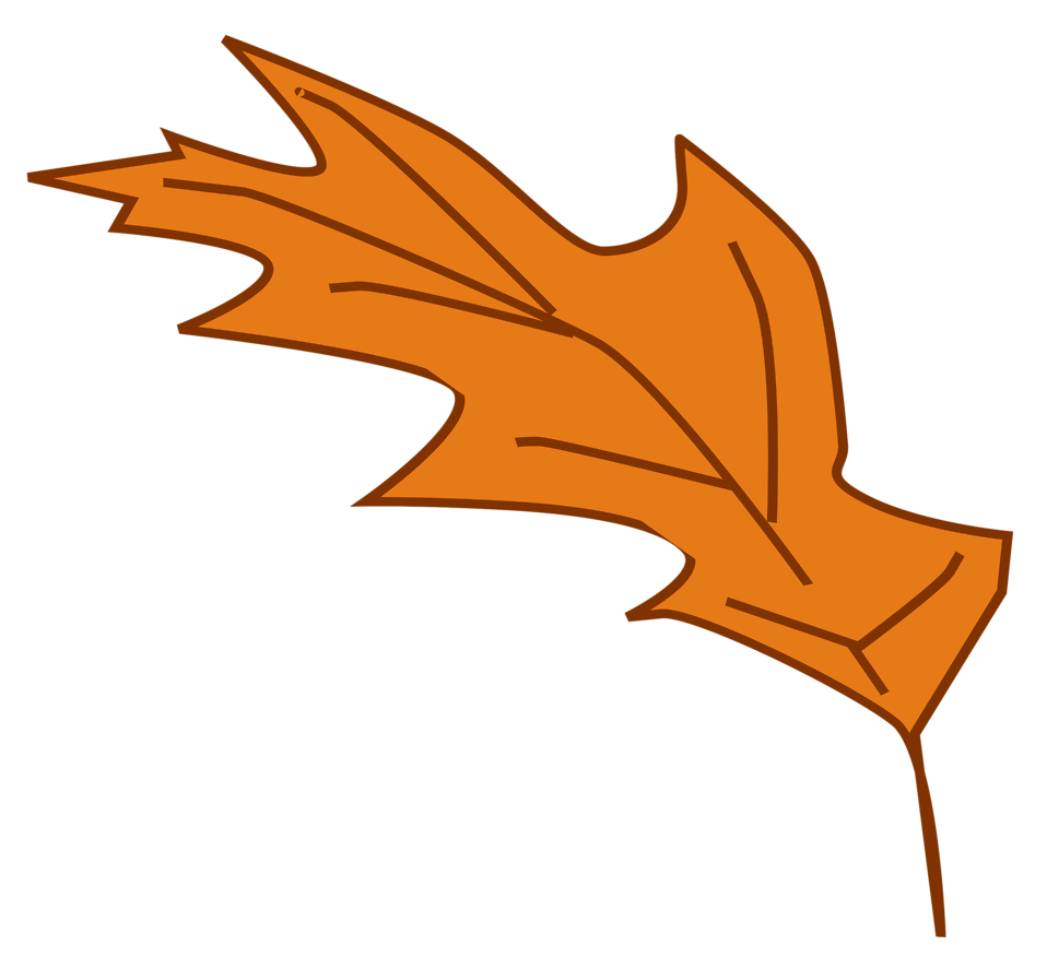 leaf clipart with transparent background - Clipground