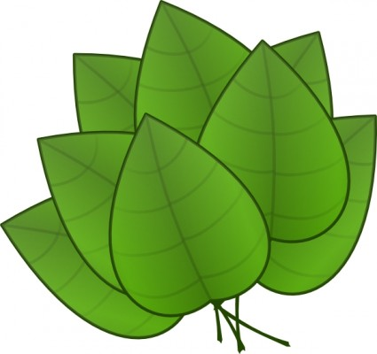 Palm Leaves Clipart.
