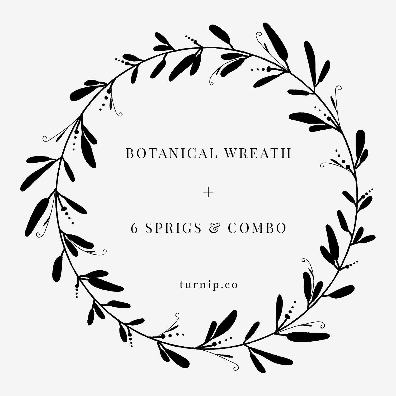 Black And White Wreath Clipart, Botanical Leaf Wreath PNG.