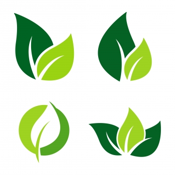Leaf Logo Png, Vector, PSD, and Clipart With Transparent.