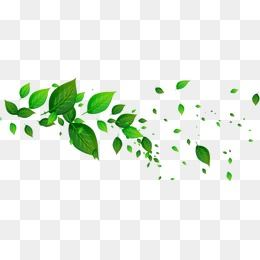 Floating Leaf PNG Images.