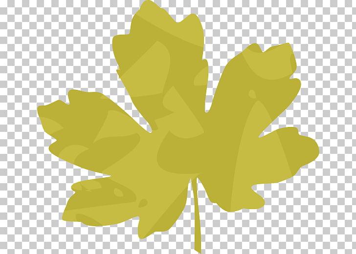 Leaf Plant stem Flower Petal, embellishment PNG clipart.