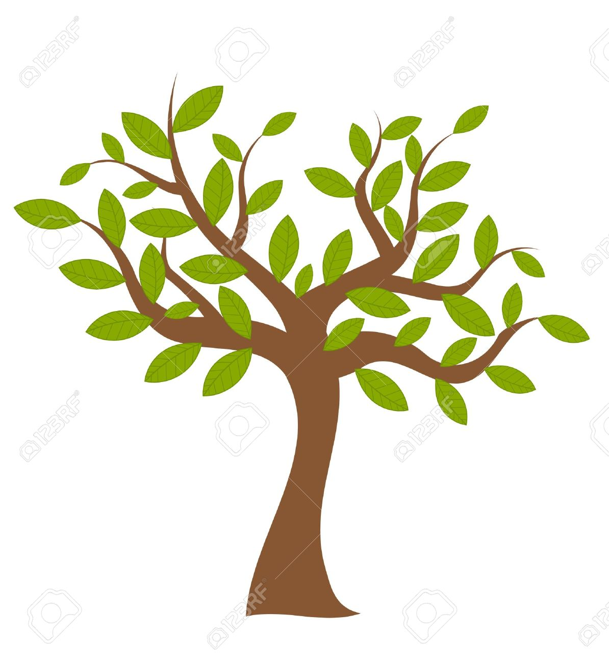 Spring Tree With Green Leaves Over White. Vector Illustration.